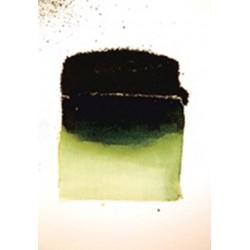 500g Bister Granules Green