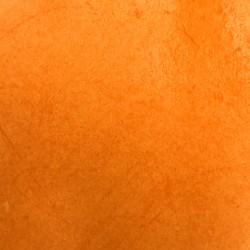 Acrylic Ink Tangerine