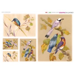 Exotic Birds Rice Paper