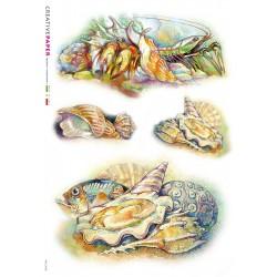 Sealife Inspired Rice Paper